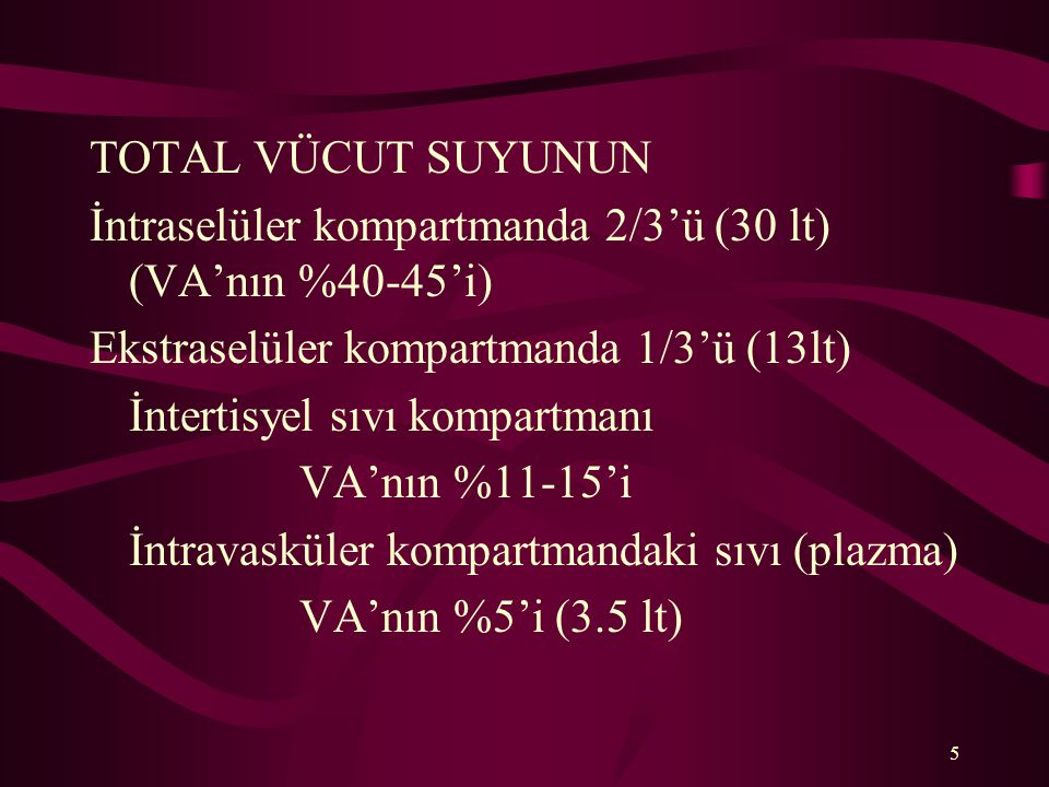 5 TOTAL VÜCUT SUYUNUN İntraselüler kompartmanda 2/3'ü (30 lt) (VA'nın %40-45'i) Ekstraselüler kompartmanda 1/3'ü (13lt) İntertisyel sıvı kompartmanı V