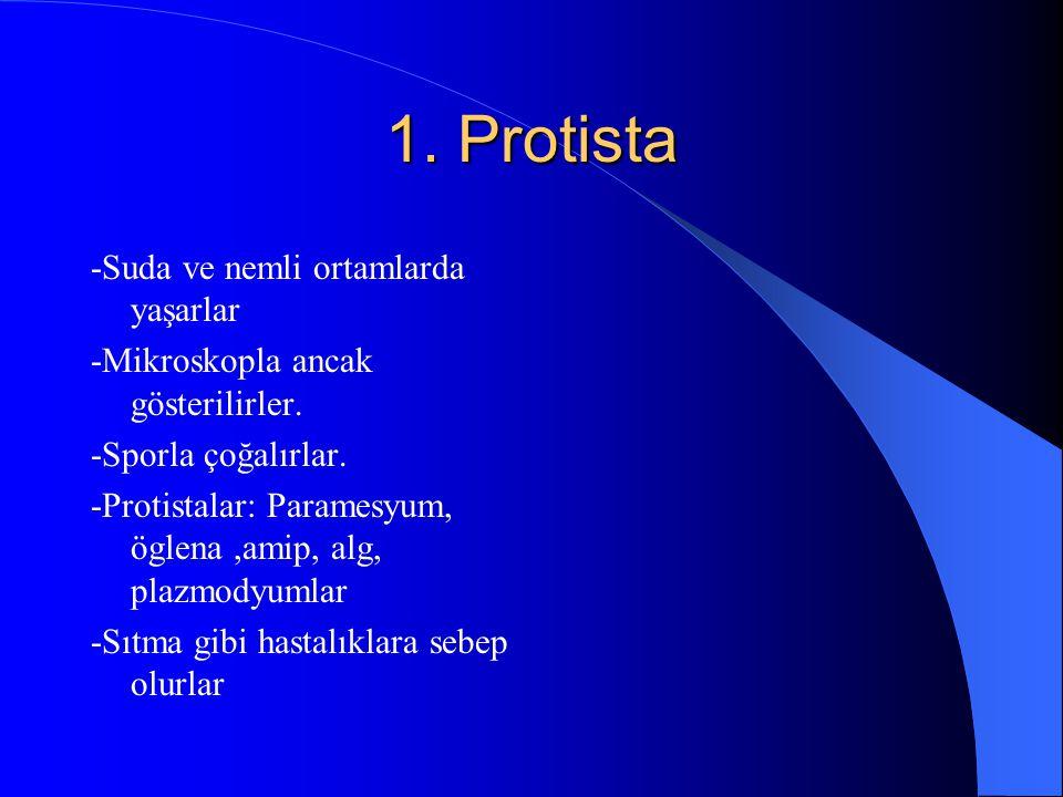 VİRÜS -Virüsler hücre boyutundadır. - Canlı vücudunda canlı,canlı dışında ise cansızdır. -Beslenip büyüyemezler ancak canlı vücuduna girdiklerinde çoğ