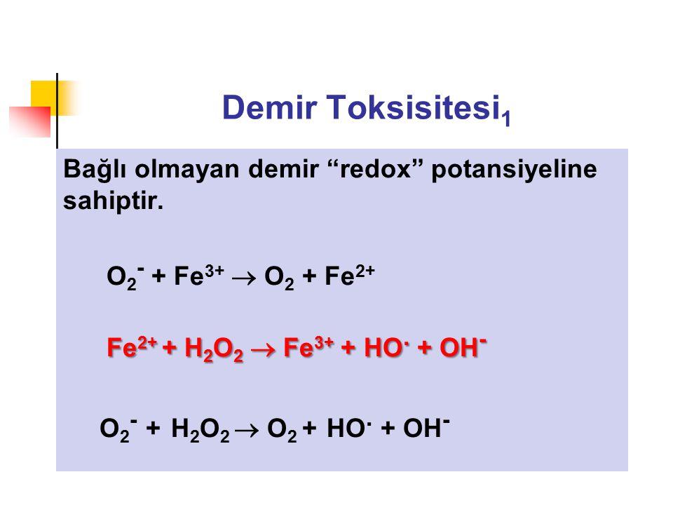 """Demir Toksisitesi 1 Bağlı olmayan demir """"redox"""" potansiyeline sahiptir. O 2 - + Fe 3+  O 2 + Fe 2+ Fe 2+ + H 2 O 2  Fe 3+ + HO. + OH - O 2 - + H 2 O"""