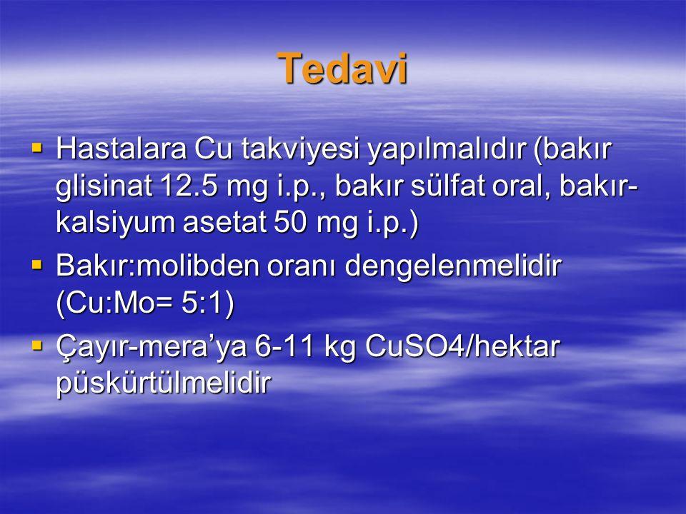 Tedavi  Hastalara Cu takviyesi yapılmalıdır (bakır glisinat 12.5 mg i.p., bakır sülfat oral, bakır- kalsiyum asetat 50 mg i.p.)  Bakır:molibden oran
