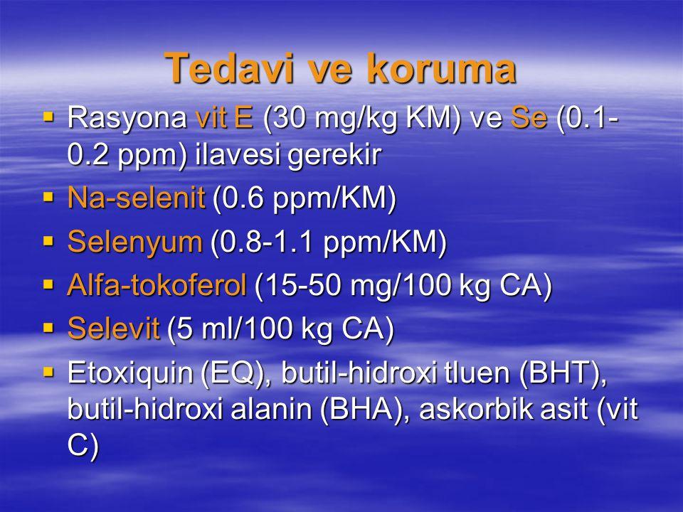 Tedavi ve koruma  Rasyona vit E (30 mg/kg KM) ve Se (0.1- 0.2 ppm) ilavesi gerekir  Na-selenit (0.6 ppm/KM)  Selenyum (0.8-1.1 ppm/KM)  Alfa-tokof