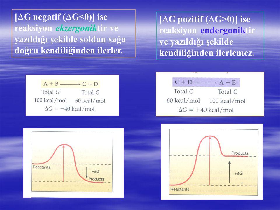 [  G negatif (  G<0)] ise reaksiyon ekzergoniktir ve yazıldığı şekilde soldan sağa doğru kendiliğinden ilerler. [  G pozitif (  G>0)] ise reaksiyo