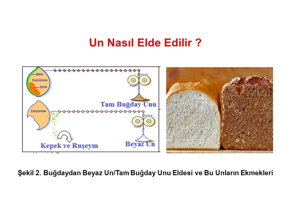 Un Nasıl Elde Edilir ? Şekil 2. Buğdaydan Beyaz Un/Tam Buğday Unu Eldesi ve Bu Unların Ekmekleri