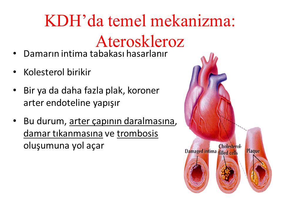 KDH'da temel mekanizma: Ateroskleroz Damarın intima tabakası hasarlanır Kolesterol birikir Bir ya da daha fazla plak, koroner arter endoteline yapışır