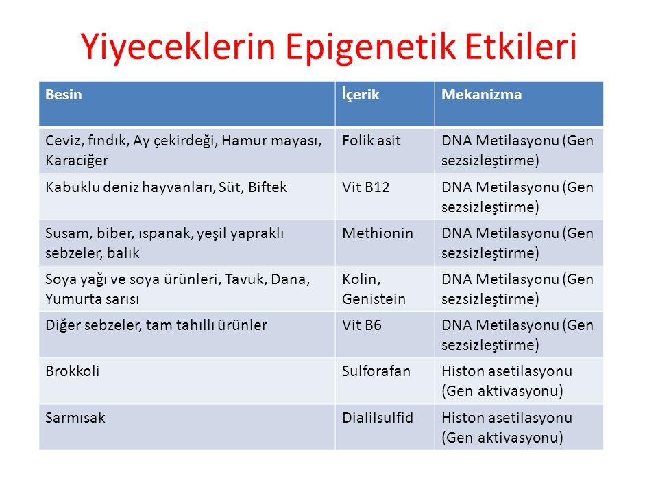 Yiyeceklerin Epigenetik Etkileri BesinİçerikMekanizma Ceviz, fındık, Ay çekirdeği, Hamur mayası, Karaciğer Folik asitDNA Metilasyonu (Gen sezsizleştirme) Kabuklu deniz hayvanları, Süt, BiftekVit B12DNA Metilasyonu (Gen sezsizleştirme) Susam, biber, ıspanak, yeşil yapraklı sebzeler, balık MethioninDNA Metilasyonu (Gen sezsizleştirme) Soya yağı ve soya ürünleri, Tavuk, Dana, Yumurta sarısı Kolin, Genistein DNA Metilasyonu (Gen sezsizleştirme) Diğer sebzeler, tam tahıllı ürünlerVit B6DNA Metilasyonu (Gen sezsizleştirme) BrokkoliSulforafanHiston asetilasyonu (Gen aktivasyonu) SarmısakDialilsulfidHiston asetilasyonu (Gen aktivasyonu)