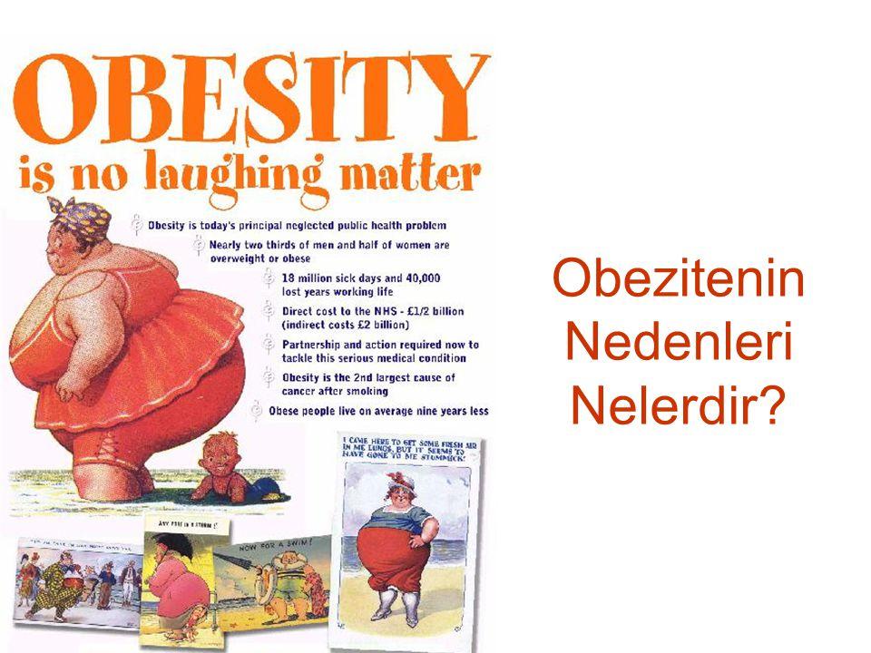 Obezitenin Nedenleri Nelerdir?