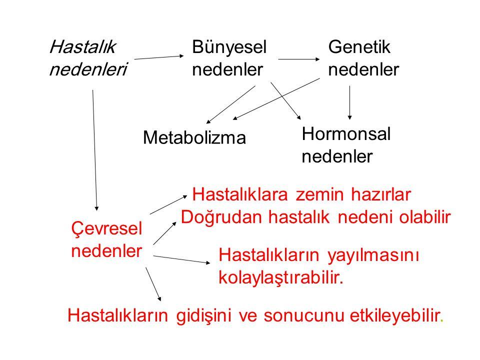 Hastalık nedenleri Bünyesel nedenler Çevresel nedenler Genetik nedenler Hormonsal nedenler Metabolizma Hastalıklara zemin hazırlar Doğrudan hastalık n