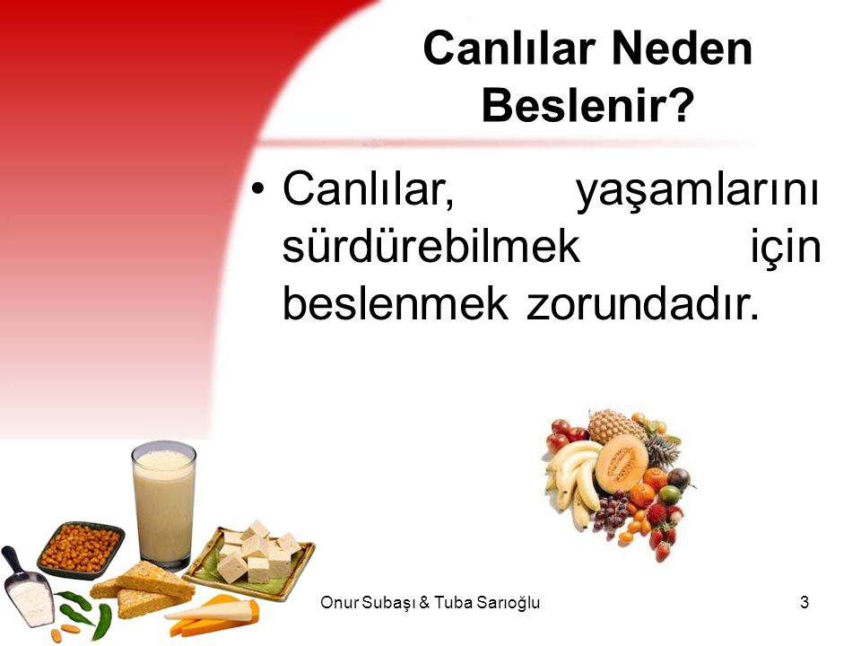 Onur Subaşı & Tuba Sarıoğlu3 Canlılar Neden Beslenir? Canlılar, yaşamlarını sürdürebilmek için beslenmek zorundadır.