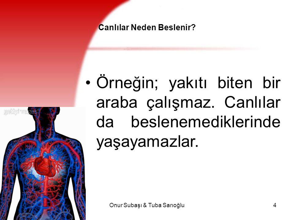 Onur Subaşı & Tuba Sarıoğlu25 A vitamini Enfeksiyonlara karşı direnci arttırır normal büyüme, üreme, kemik ve diş gelişimi, görme için gereklidir.