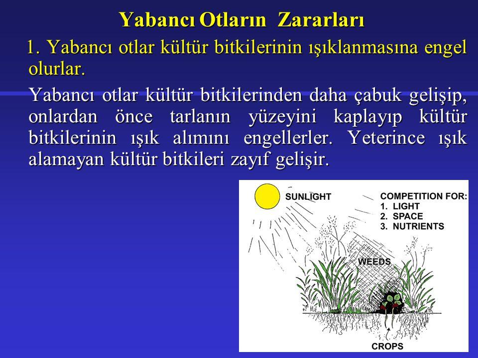 2.Kültür bitkilerinin su ve besinine ortak olurlar.