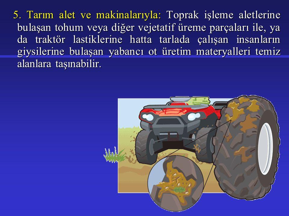 5. Tarım alet ve makinalarıyla: Toprak işleme aletlerine bulaşan tohum veya diğer vejetatif üreme parçaları ile, ya da traktör lastiklerine hatta tarl