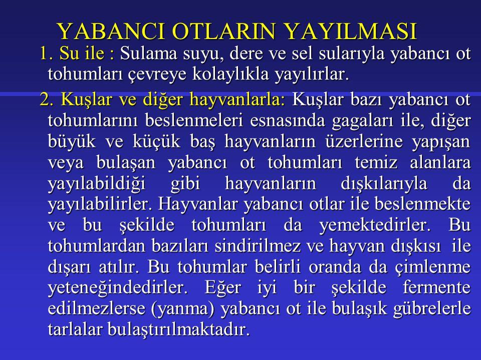 YABANCI OTLARIN YAYILMASI 1.
