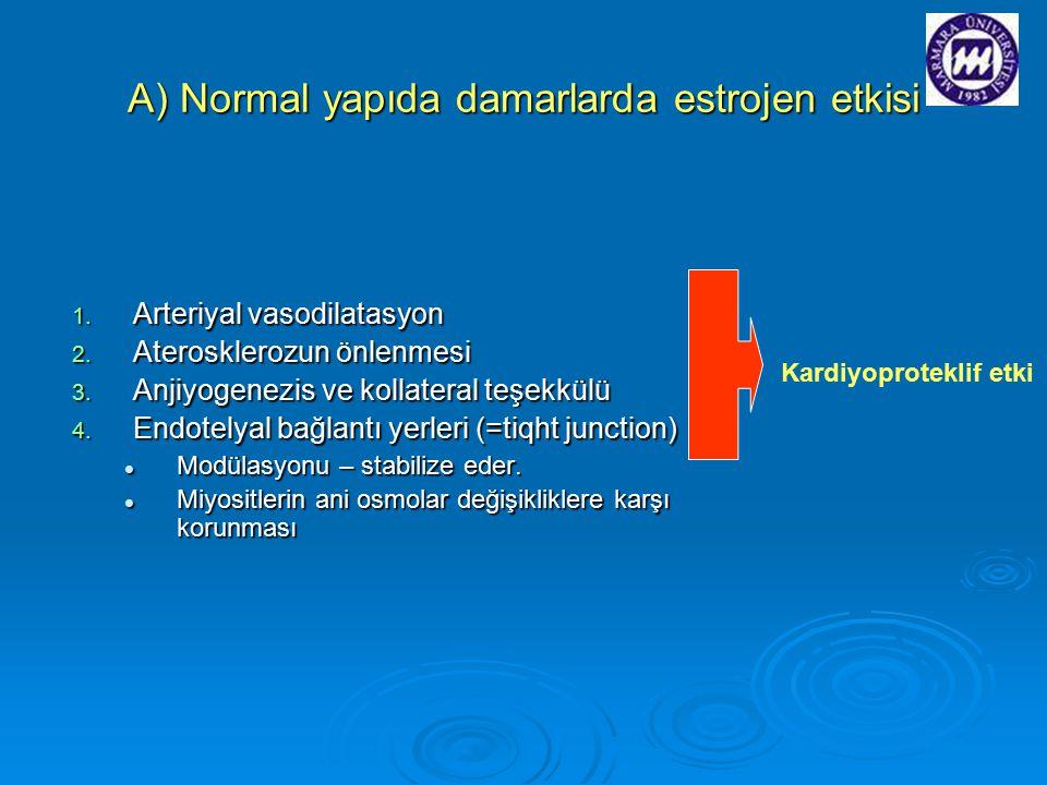 A) Normal yapıda damarlarda estrojen etkisi 1. Arteriyal vasodilatasyon 2. Aterosklerozun önlenmesi 3. Anjiyogenezis ve kollateral teşekkülü 4. Endote