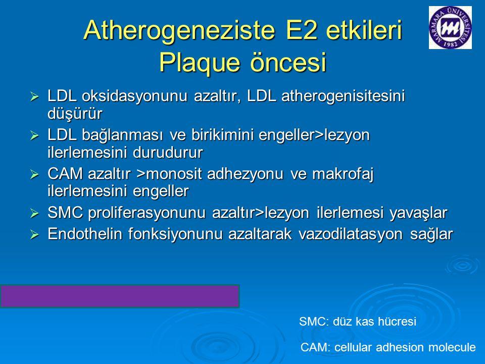 Atherogeneziste E2 etkileri Plaque öncesi  LDL oksidasyonunu azaltır, LDL atherogenisitesini düşürür  LDL bağlanması ve birikimini engeller>lezyon i
