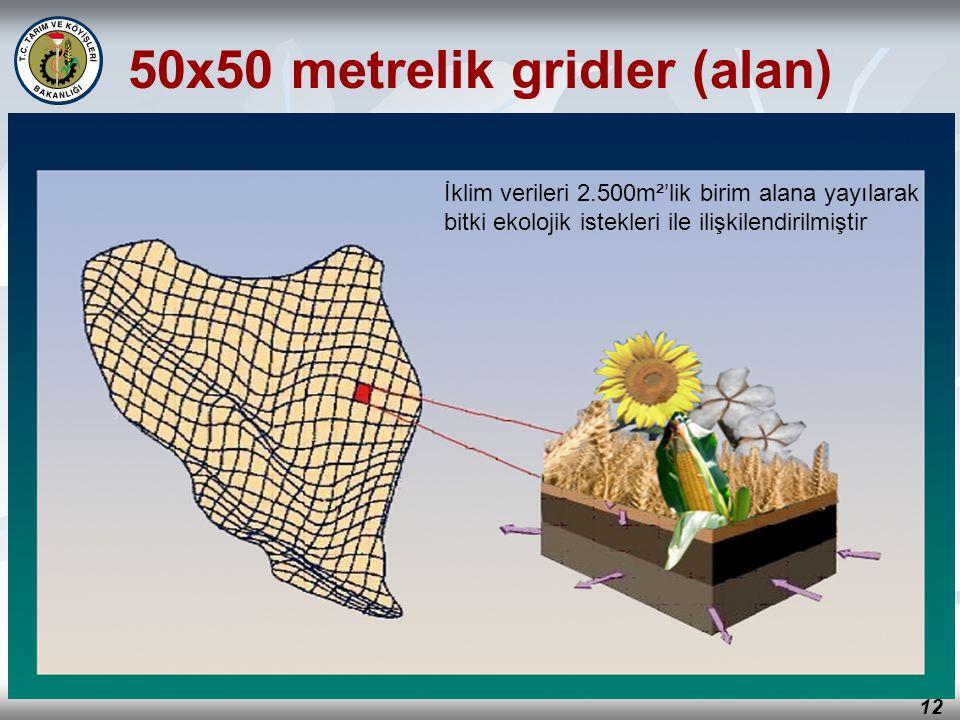 12 İklim verileri 2.500m²'lik birim alana yayılarak bitki ekolojik istekleri ile ilişkilendirilmiştir 50x50 metrelik gridler (alan)