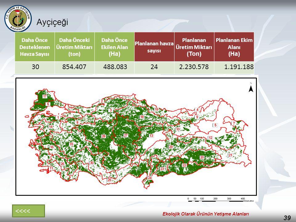 39 Ayçiçeği Daha Önce Desteklenen Havza Sayısı Daha Önceki Üretim Miktarı (ton) Daha Önce Ekilen Alan (Ha) Planlanan havza sayısı Planlanan Üretim Mik