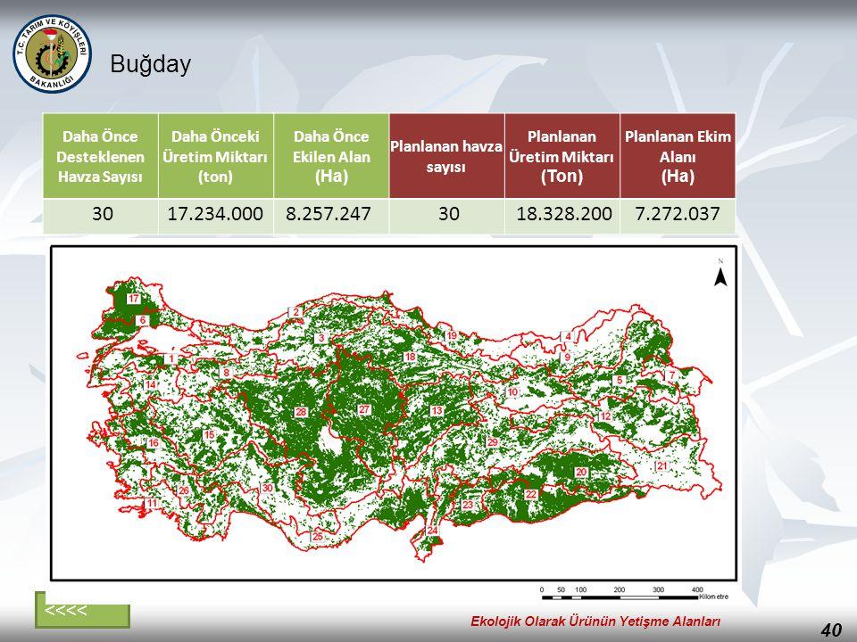 40 Buğday Daha Önce Desteklenen Havza Sayısı Daha Önceki Üretim Miktarı (ton) Daha Önce Ekilen Alan (Ha) Planlanan havza sayısı Planlanan Üretim Mikta