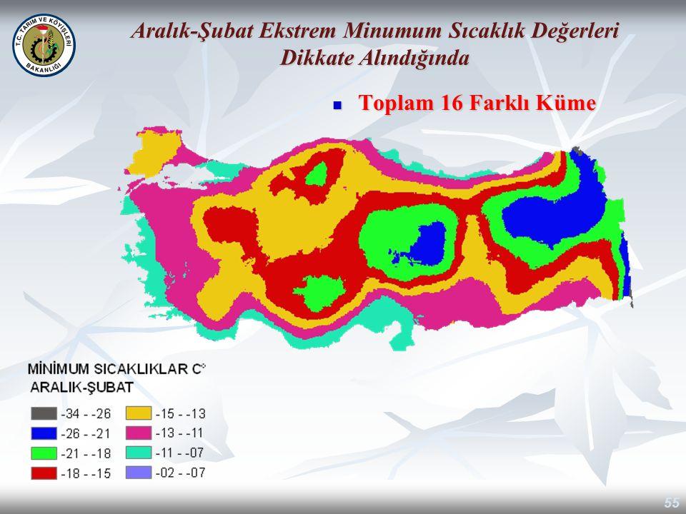 Toplam 16 Farklı Küme Toplam 16 Farklı Küme 55 Aralık-Şubat Ekstrem Minumum Sıcaklık Değerleri Dikkate Alındığında