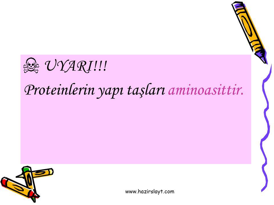 www.hazirslayt.com UYARI!!! Proteinlerin yapı taşları aminoasittir.