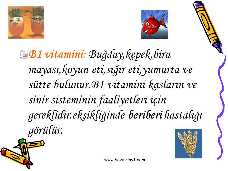 www.hazirslayt.com B1 vitamini: Buğday,kepek,bira mayası,koyun eti,sığır eti,yumurta ve sütte bulunur.B1 vitamini kasların ve sinir sisteminin faaliye
