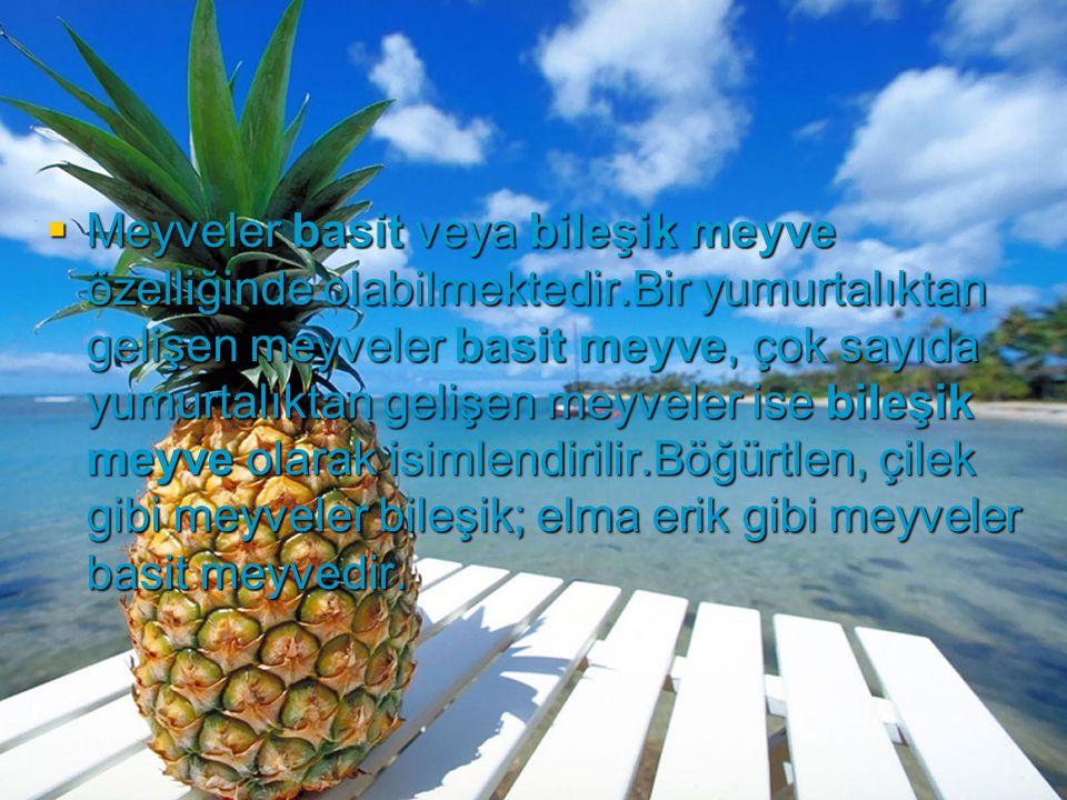  Meyveler basit veya bileşik meyve özelliğinde olabilmektedir.Bir yumurtalıktan gelişen meyveler basit meyve, çok sayıda yumurtalıktan gelişen meyvel