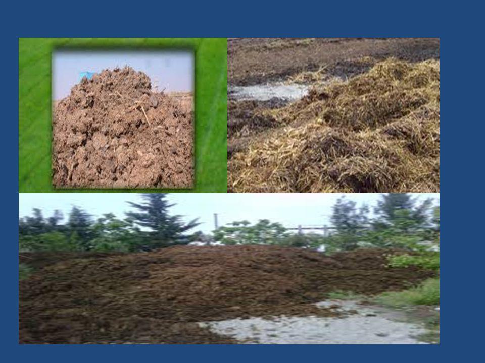 Ahır Gübresi Ahır gübrelerinin önemli özelliklerinden biri de zengin mikro-organizma kaynağı olmasıdır.