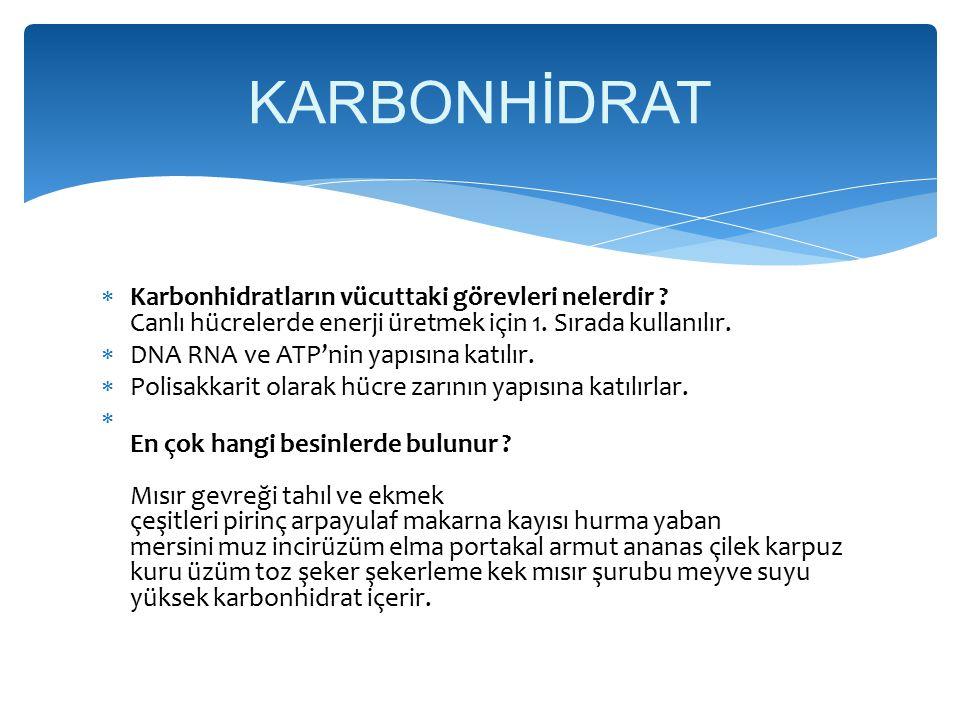  Karbonhidratların vücuttaki görevleri nelerdir .