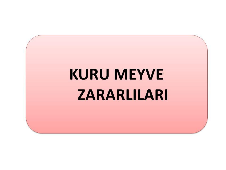 KURU MEYVE ZARARLILARI