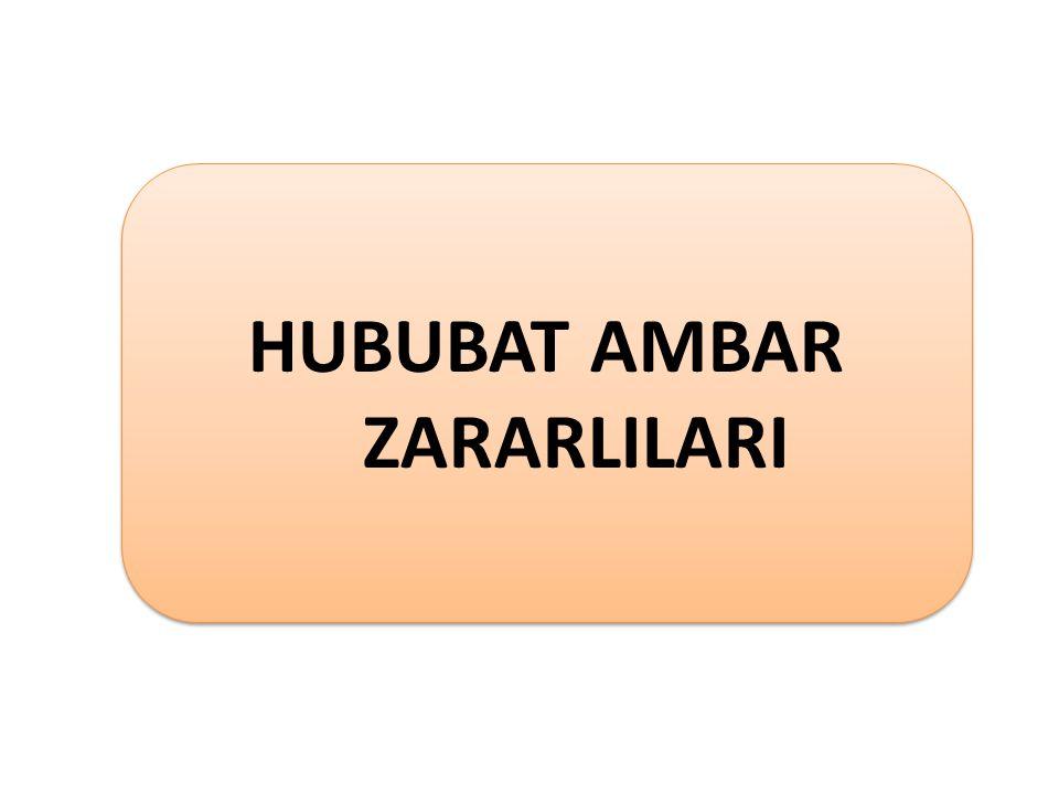 HUBUBAT AMBAR ZARARLILARI