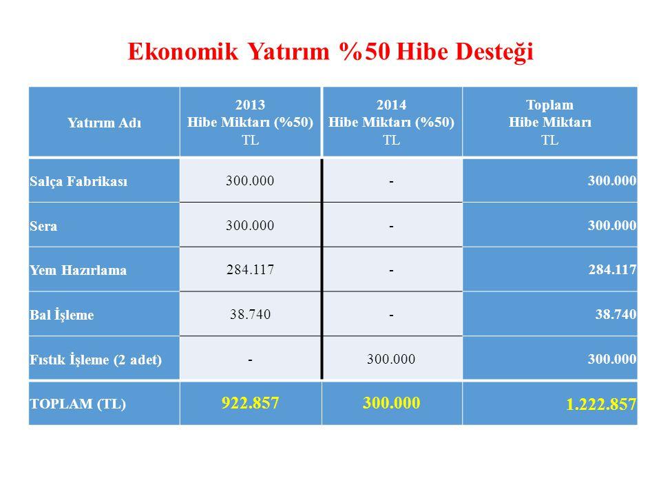 Ekonomik Yatırım %50 Hibe Desteği Yatırım Adı 2013 Hibe Miktarı (%50) TL 2014 Hibe Miktarı (%50) TL Toplam Hibe Miktarı TL Salça Fabrikası300.000- Sera300.000- Yem Hazırlama284.117- Bal İşleme38.740- Fıstık İşleme (2 adet)-300.000 TOPLAM (TL) 922.857300.0001.222.857