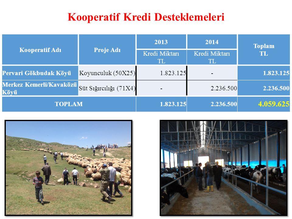 Kooperatif Kredi Desteklemeleri Kooperatif AdıProje Adı 20132014 Toplam TL Kredi Miktarı TL Kredi Miktarı TL Pervari Gökbudak KöyüKoyunculuk (50X25)1.823.125- Merkez Kemerli/Kavaközü Köyü Süt Sığırcılığı (71X4)-2.236.500 TOPLAM1.823.1252.236.500 4.059.625