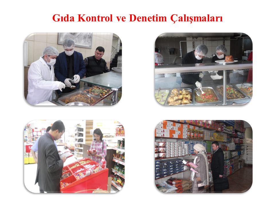 Gıda Kontrol ve Denetim Çalışmaları