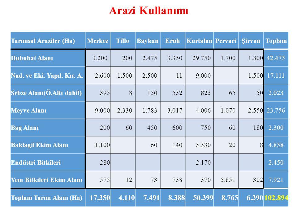 Arazi Kullanımı Tarımsal Araziler (Ha)MerkezTilloBaykanEruhKurtalanPervariŞirvanToplam Hububat Alanı 3.200 200 2.475 3.350 29.750 1.700 1.80042.475 Nad.