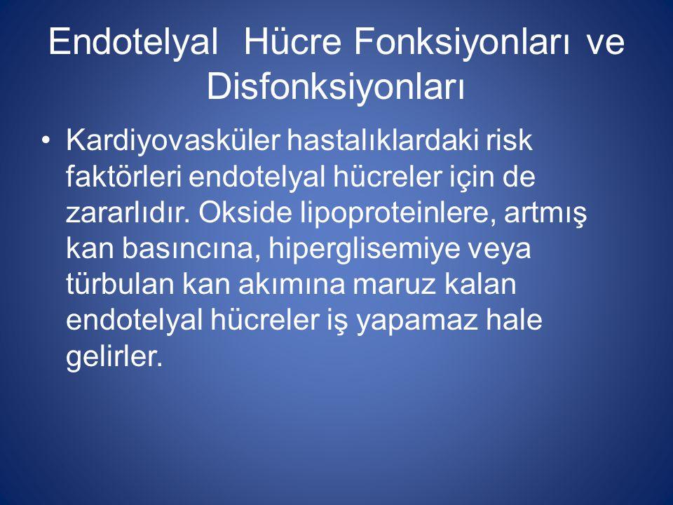 Endotelyal Hücre Fonksiyonları ve Disfonksiyonları Kardiyovasküler hastalıklardaki risk faktörleri endotelyal hücreler için de zararlıdır. Okside lipo