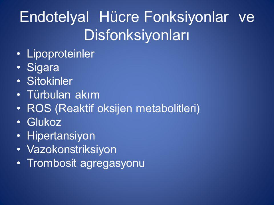 Endotelyal Hücre Fonksiyonları ve Disfonksiyonları Düz kas hücre proliferasyonu Lökosit adezyonu LDL oksidasyonu MMPs aktivasyonu Endotelyal disfonksiyon Nitrik oksid aktivitesinde azalma Endotelyal aktivasyon Molekül adezyonunda artış