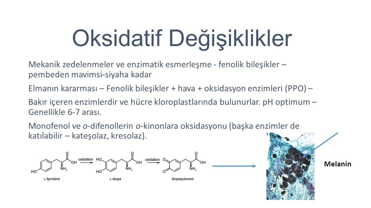 Aroma Maddeleri İşlemede hem yeni bileşikler oluşur, hem de önceden bulunanların bir kısmı kaybolur.