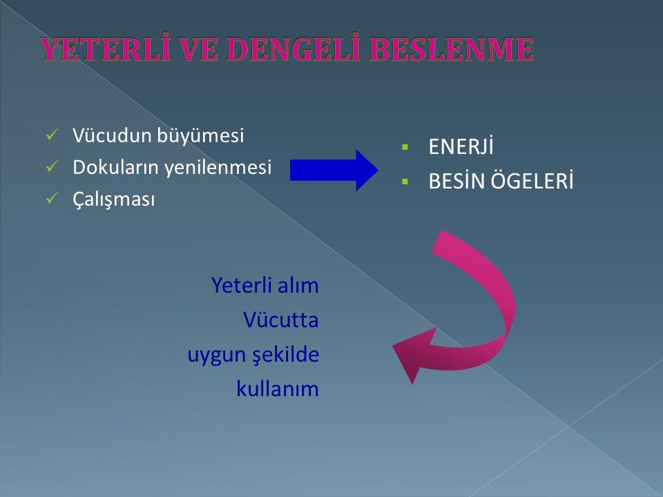 Vücudun büyümesi Dokuların yenilenmesi Çalışması Yeterli alım Vücutta uygun şekilde kullanım  ENERJİ  BESİN ÖGELERİ