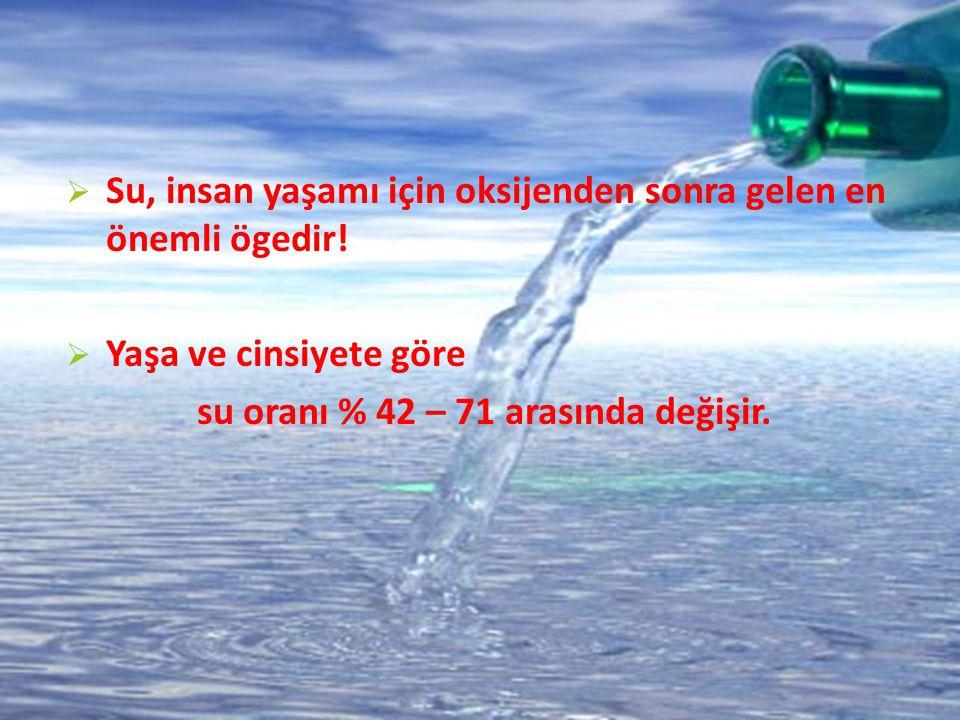  Su, insan yaşamı için oksijenden sonra gelen en önemli ögedir!  Yaşa ve cinsiyete göre su oranı % 42 – 71 arasında değişir.
