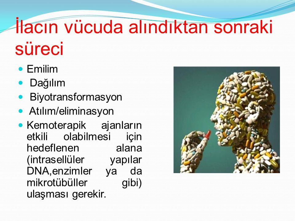İlacın vücuda alındıktan sonraki süreci Emilim Dağılım Biyotransformasyon Atılım/eliminasyon Kemoterapik ajanların etkili olabilmesi için hedeflenen a