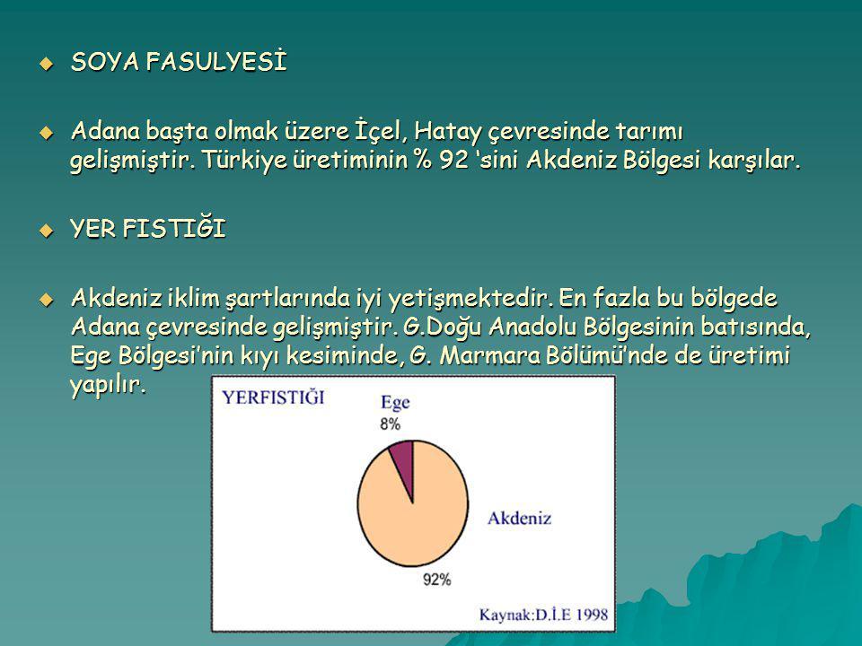  SOYA FASULYESİ  Adana başta olmak üzere İçel, Hatay çevresinde tarımı gelişmiştir.