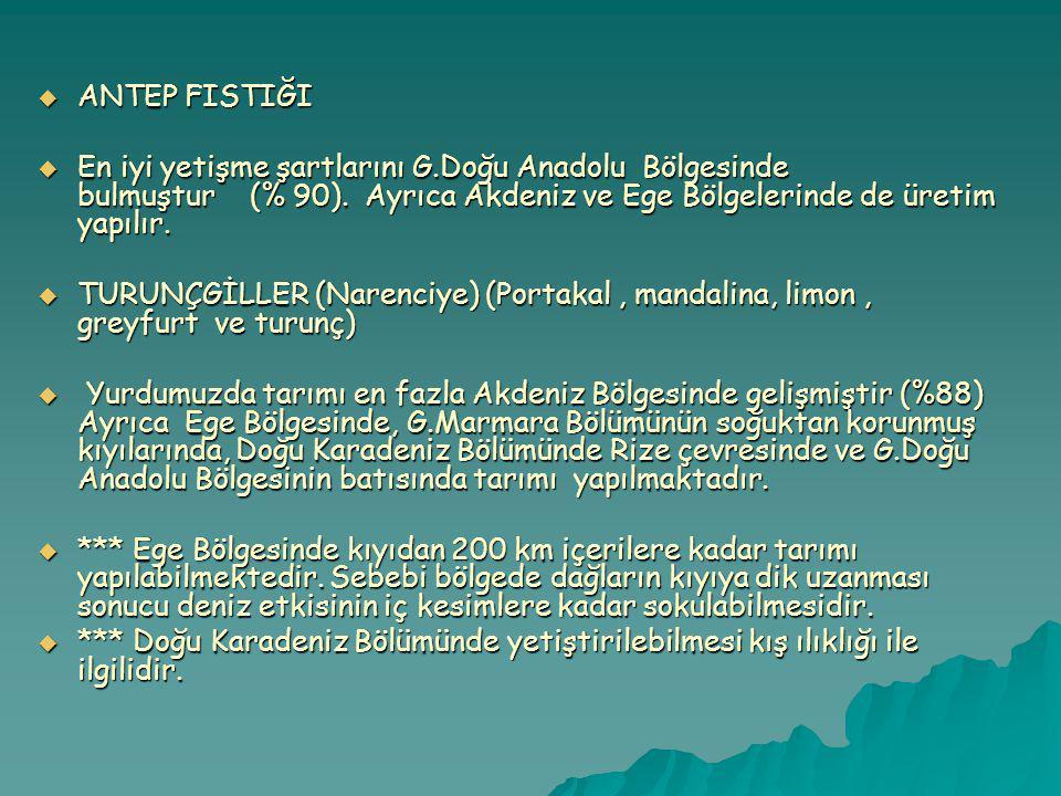  ANTEP FISTIĞI  En iyi yetişme şartlarını G.Doğu Anadolu Bölgesinde bulmuştur (% 90).