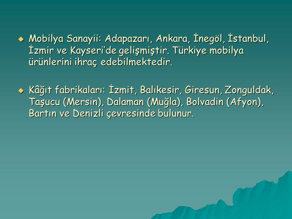  Mobilya Sanayii: Adapazarı, Ankara, İnegöl, İstanbul, İzmir ve Kayseri'de gelişmiştir.