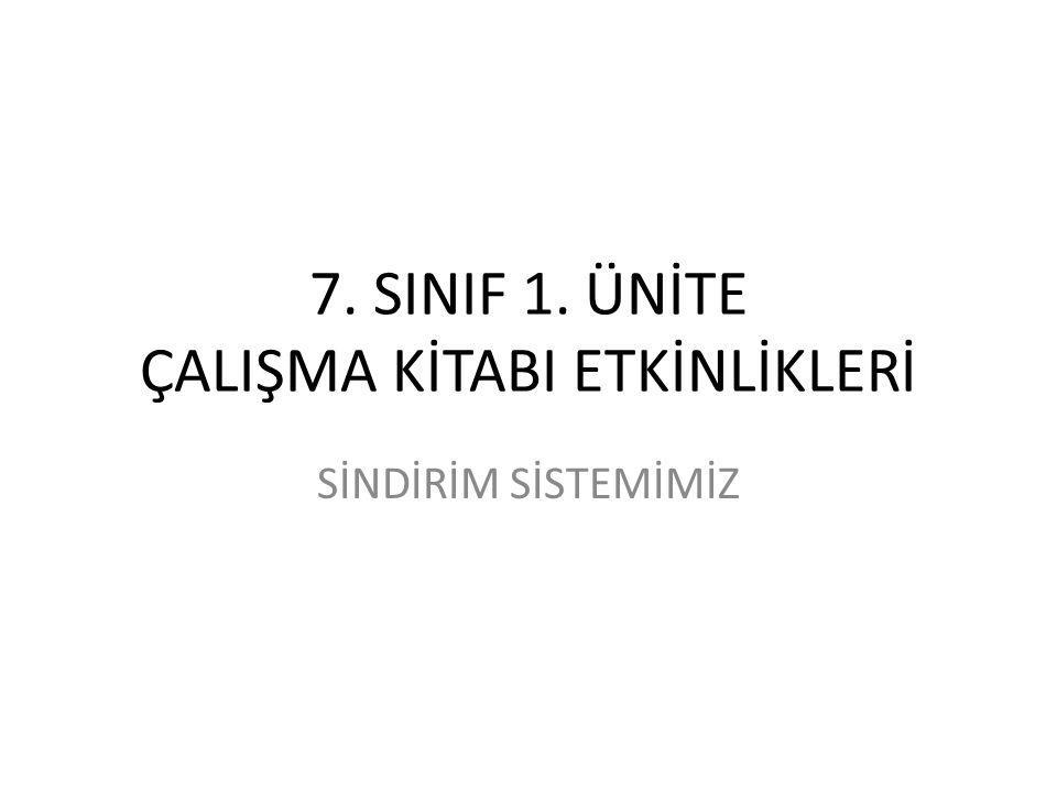 7. SINIF 1. ÜNİTE ÇALIŞMA KİTABI ETKİNLİKLERİ SİNDİRİM SİSTEMİMİZ