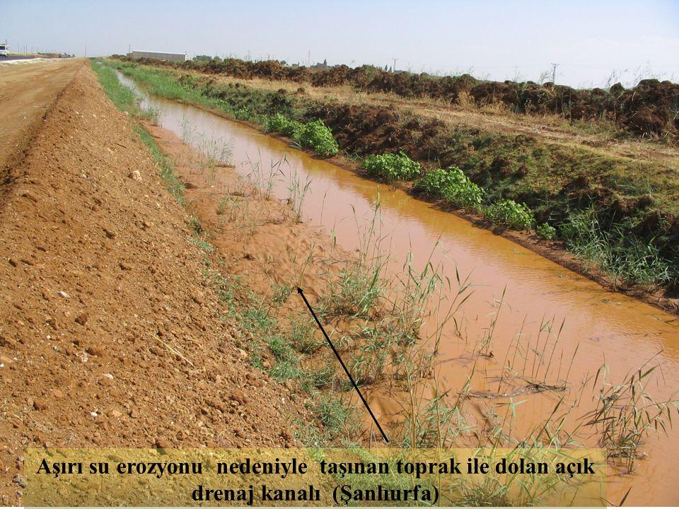 Aşırı su erozyonu nedeniyle taşınan toprak ile dolan açık drenaj kanalı (Şanlıurfa)