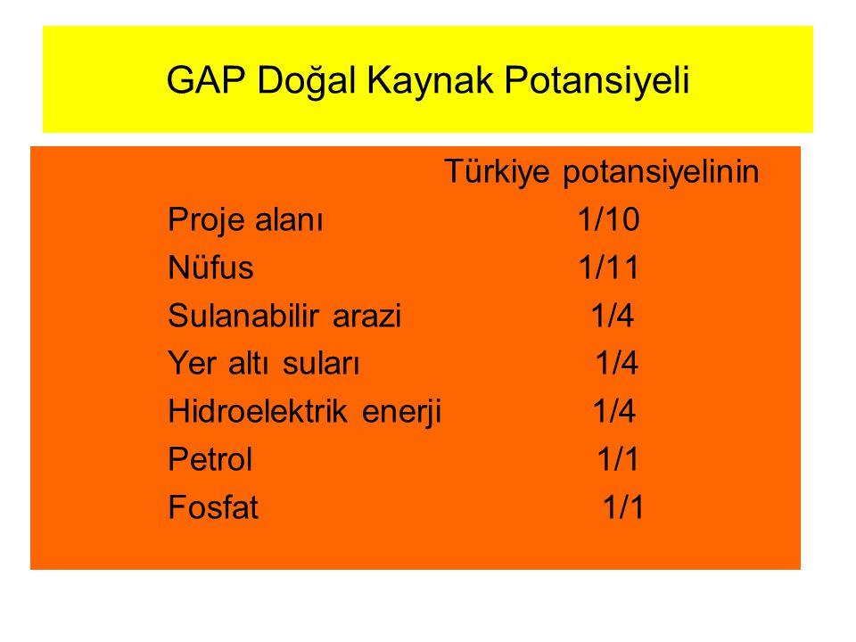 GAP Doğal Kaynak Potansiyeli Türkiye potansiyelinin Proje alanı 1/10 Nüfus 1/11 Sulanabilir arazi 1/4 Yer altı suları 1/4 Hidroelektrik enerji 1/4 Pet