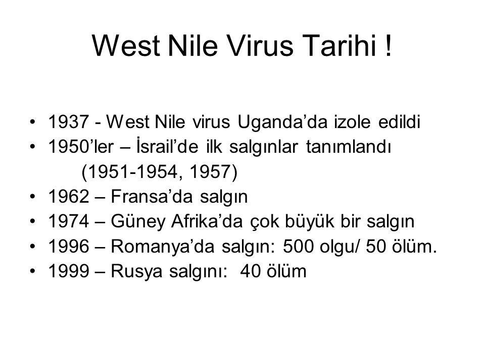 West Nile Virus Tarihi ! 1937 - West Nile virus Uganda'da izole edildi 1950'ler – İsrail'de ilk salgınlar tanımlandı (1951-1954, 1957) 1962 – Fransa'd