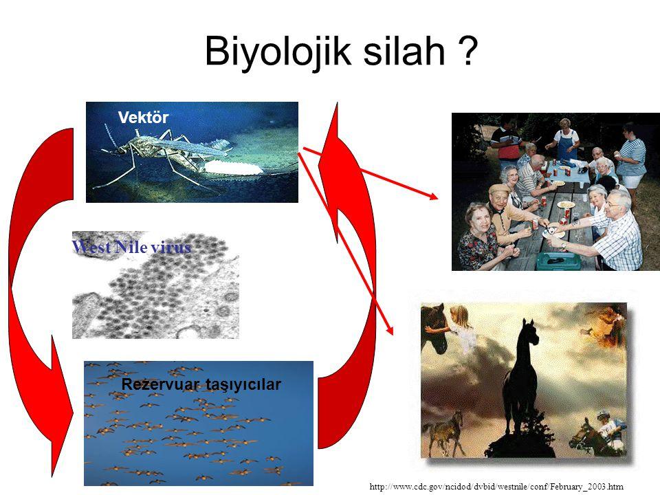 West Nile virus Vektör Rezervuar taşıyıcılar Biyolojik silah ? http://www.cdc.gov/ncidod/dvbid/westnile/conf/February_2003.htm