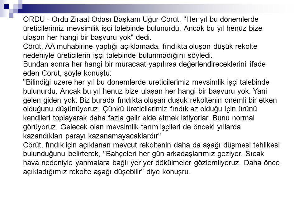 ORDU - Ordu Ziraat Odası Başkanı Uğur Cörüt,