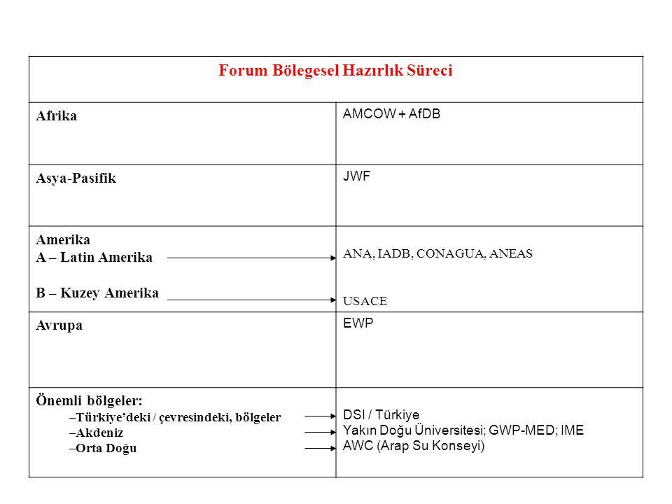 Forum Bölegesel Hazırlık Süreci Afrika AMCOW + AfDB Asya-Pasifik JWF Amerika A – Latin Amerika B – Kuzey Amerika ANA, IADB, CONAGUA, ANEAS USACE Avrupa EWP Önemli bölgeler: –Türkiye'deki / çevresindeki, bölgeler –Akdeniz –Orta Doğu DSI / Türkiye Yakın Doğu Üniversitesi; GWP-MED; IME AWC (Arap Su Konseyi)