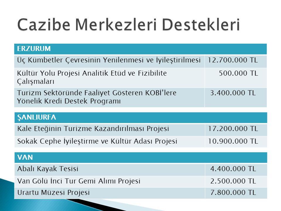 ERZURUM Üç Kümbetler Çevresinin Yenilenmesi ve İyileştirilmesi12.700.000 TL Kültür Yolu Projesi Analitik Etüd ve Fizibilite Çalışmaları 500.000 TL Tur